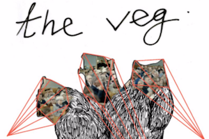 theveg-png